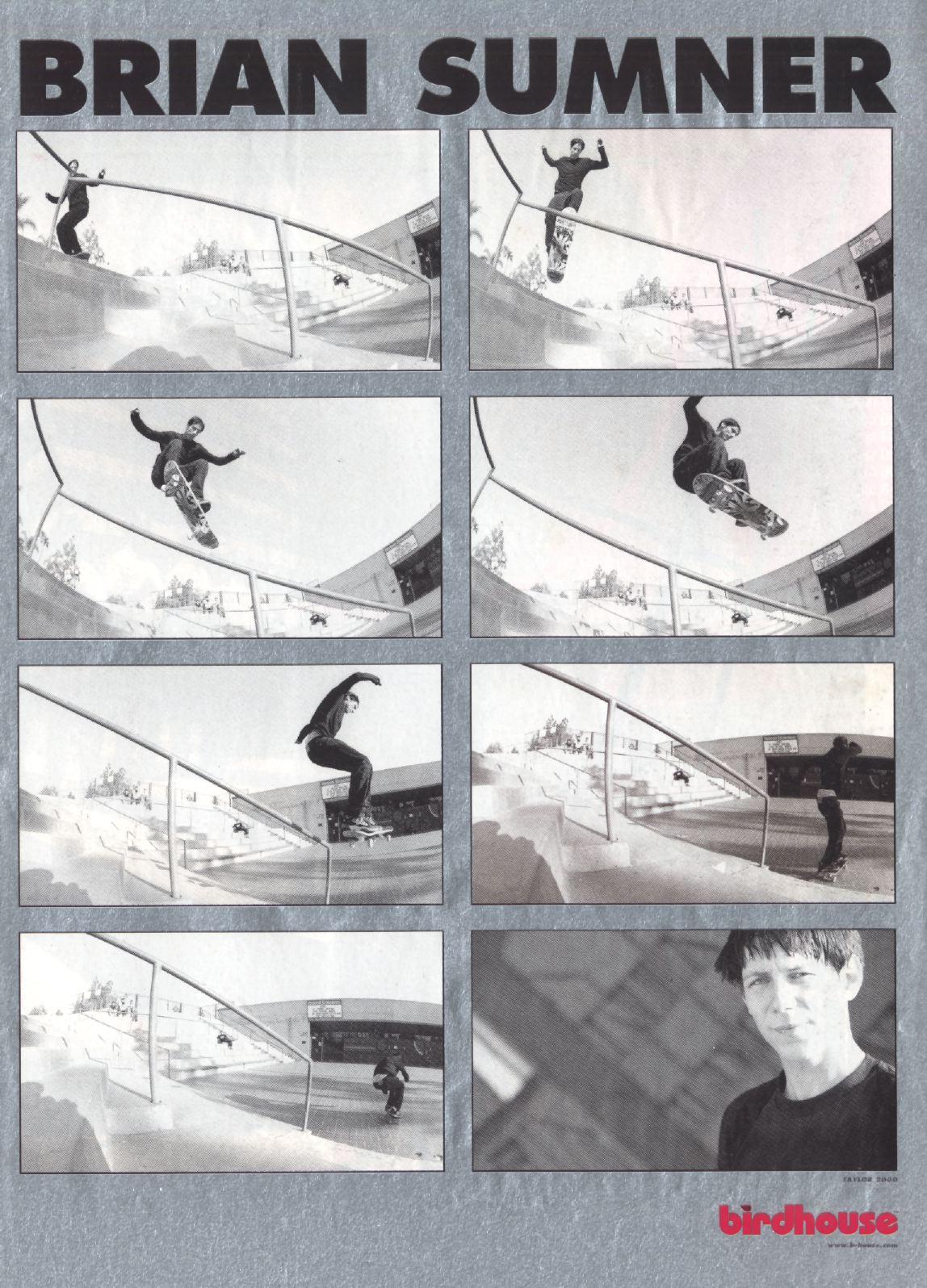 96 birdhouse ad