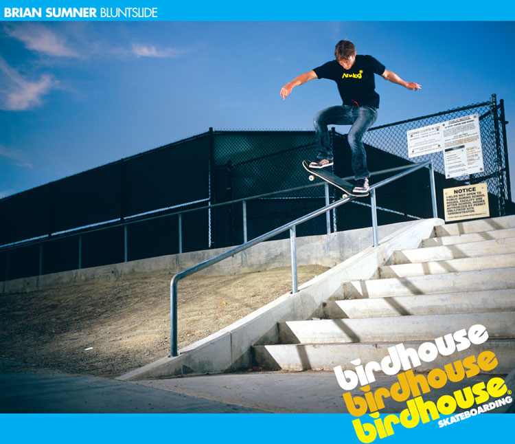 Birdhouse bluntslide ad